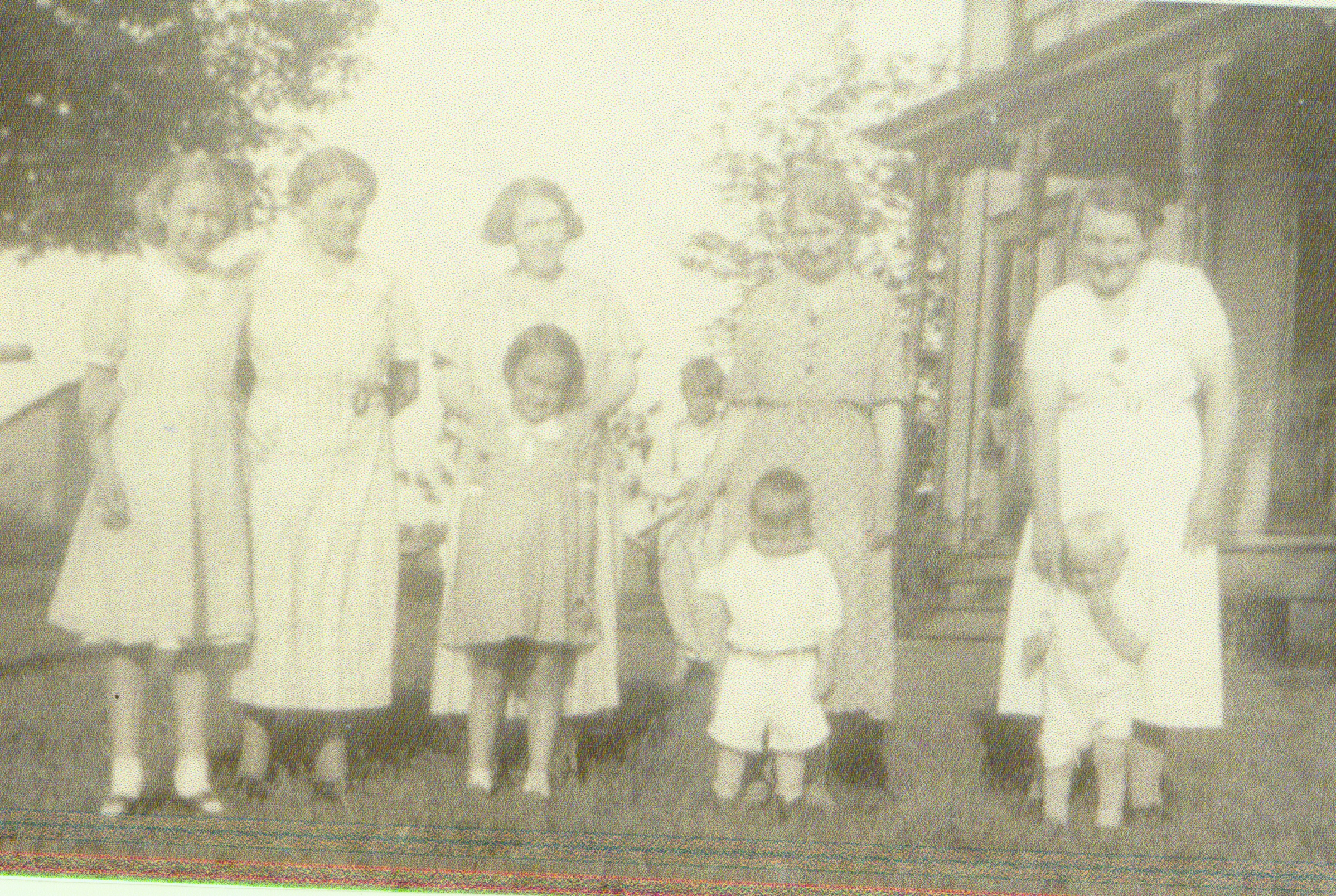 Letter from a Gray Family Matriarch on Preserving History